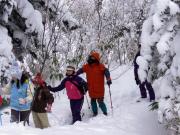 f_snow5_000