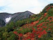 黒岳002_1