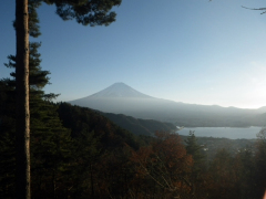 Mt. Fuji seen in the distance from a hiking trail