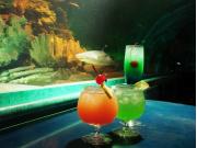 Ocean_Lounge_2