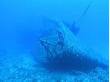 沖縄ダイビングサービス あいる・ぷまんどぅ8