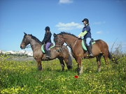 541107_4_HorseRidingInTheMalteseCountryside1