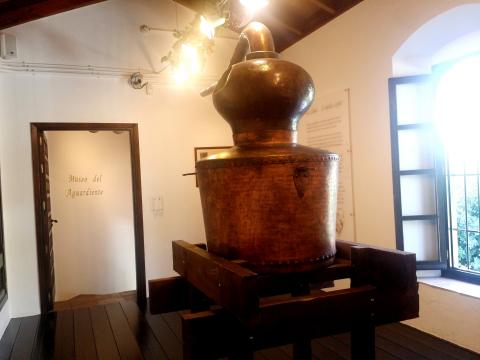 Schnaps museum
