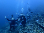 Ocean Academy2