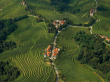 Slovenske_Gorice_vineyard