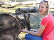 kangaroofeeding