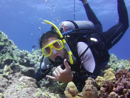 Kohala Divers Big Island