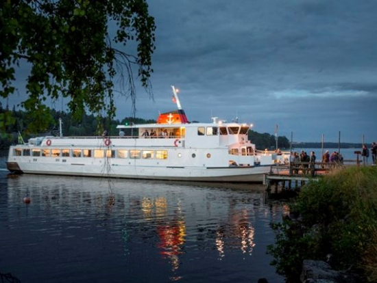 Lake Mälaren Cruise From Stockholm With Buffet Dinner And Live DJ - Stockholm tours from cruise ships