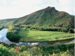 PolyAd Kauai 12