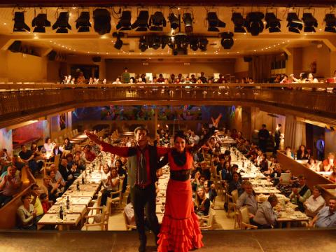 フラメンコ・ショー「Palacio del Flamenco」<ドリンクまたは選べるディナー付き/バルセロナ>