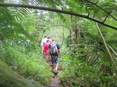 Waterfall Hike 12