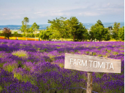 Farm Tomita sign cropped