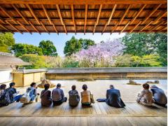 Ryoanji garden cropped