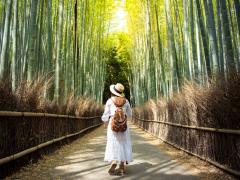 Tourist in Arashiyama cropped