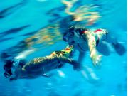 snorkel-XELHA-crop