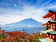 09142016_Fuji Maple 2