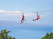 Skyline Maui 06