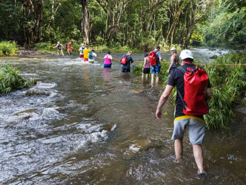 Kauai-Secret-Waterfall
