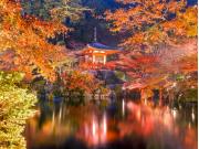 醍醐寺ライトアップ(shuttersock)