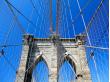 Brooklyn Bridge Photo Safari