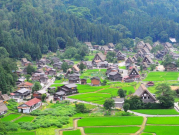 Shirakawago green cropped