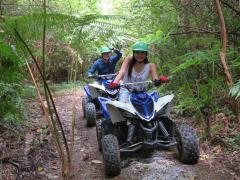 バギー(ATV)ライド+ジャングルウォーク 自分の運転でやんばるの森を疾走!<免許不要・1名1台(子供は大人と同乗)/ネイチャーガイドの解説付/名護市>