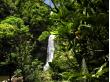 Temptation-Tours-Hana-Cave-Quest-Rainforest-Waterfall-1024x768