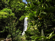 Temptation-Tours-Hana-Cave-Quest-Rainforest-Waterfall-1024x768