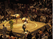 Sumo tournament 123rf cropped