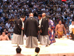 Nagoya Sumo cropped