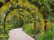 singapore_botanic-gardens_shutterstock_92813191