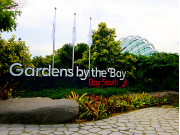 singapore-gardens-by-the-bay (6)