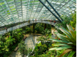 singapore_gardens-by-the-bay_shutter_368696480