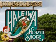 north-shore-adventure-tour-109-stop-06