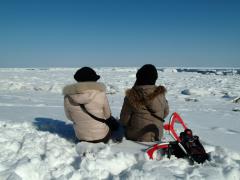 オホーツク自然堂/氷の滝