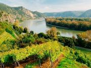csm_6_Wachau_Boat_Trip_Spitz-Melk-18__c__VIENNA_SIGHTSEEING_TOURS_Bernhard_Luck_b_82adda1afc