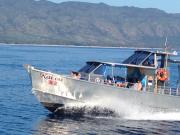 NSSA boat