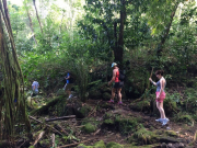 hawaii-waterfall-hike-12