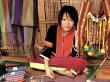 Chiang Mai tradeswoman