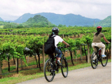 Khao_Yai_Wine_Trails_Cycling (1)