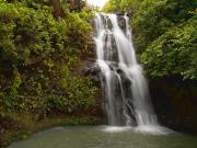 Blue Hawaii Photo Tours, 6
