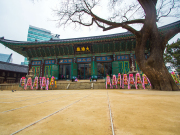 korea_seoul_Jogyesa-Temple-in-Seoul-,-South-Korea_shutterstock_186894740
