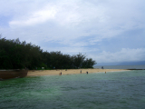 green_islands (12)