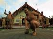 _Auckland_to_Rotorua_via_Waitomo (11)