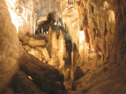 Waitomo Glowworm Caves (2)