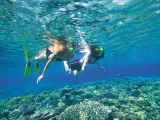 Great_Barrier_Reef (10)