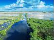 everglades-crop