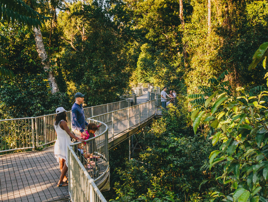 ... Mamu Tropical Skywalk 3; mena ... & Paronella Park Mamu Tropical Skywalk and Josephine Falls Day ...