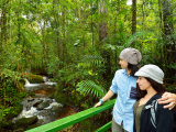 Kinabalu_National_Park_and_Poring_Hot_Springs (3)