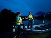 Fireflies Phenomena (3)